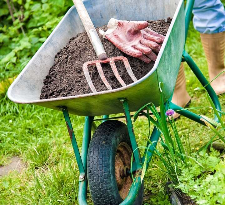 Gardening – It's still a workout! How to avoid low back pain and knee pain